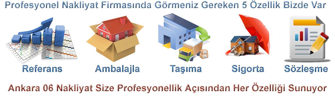 Ankara Nakliyat İnfografik